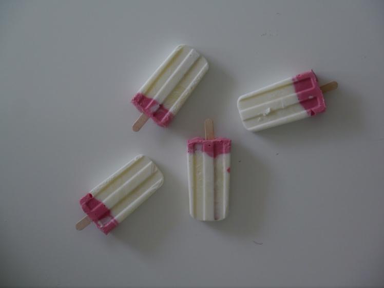 Joghurt Rhabarber Eis Pops