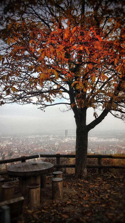 Herbstlandschaft, Kind mit Mütze und Cordhose