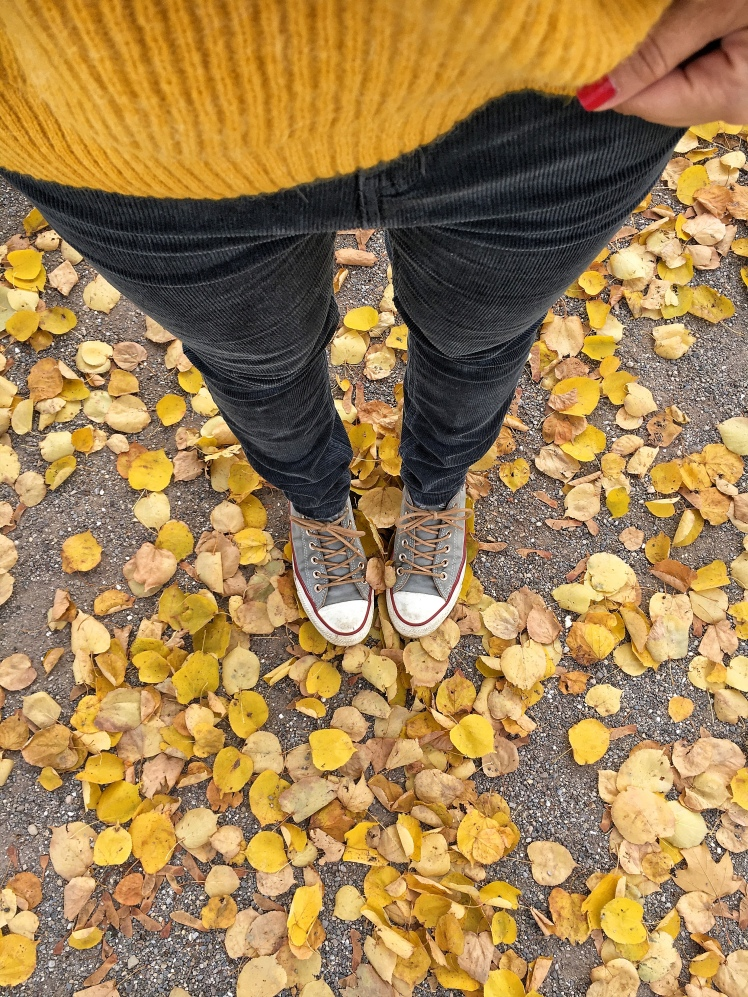 Cordhose Herbsttrend 2018
